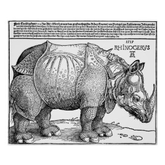 Rhino by Durer Poster
