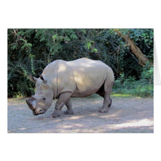 Rhino Greeting Card AK