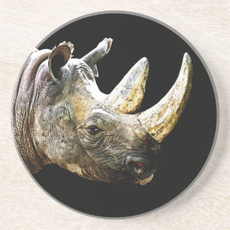 Rhino Head, Black Background Coaster