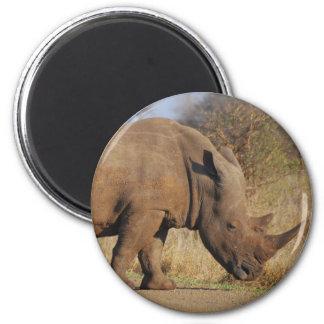 Rhino Magnet