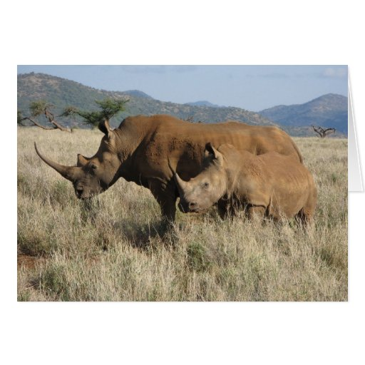 Rhino mom & baby card