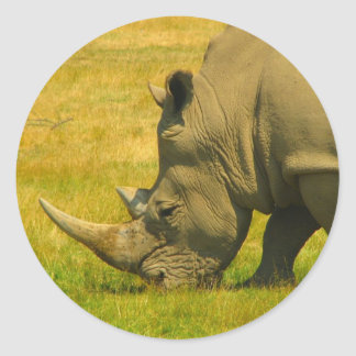 Rhino Photo Sticker