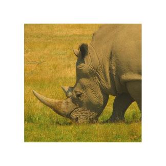 Rhino Photo Wood Prints