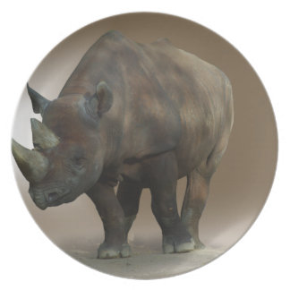 Rhino Plate