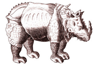 9fae60419bc Rhino Renaissance Style Drawing Of A Rhinoceros Wine Charm. Rhino Party  Supplies ...