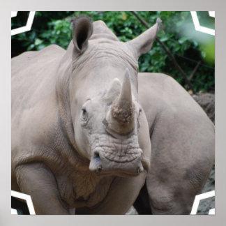 Rhino Romp Posters