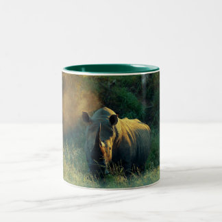 Rhino stare coffee mugs & cups