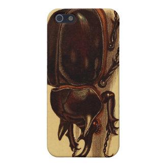Rhinoceros Beetles iPhone 5/5S Case