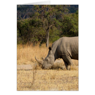 Rhinoceros Family Greeting Card