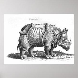 Rhinoceros, from 'Historia Animalium' Poster
