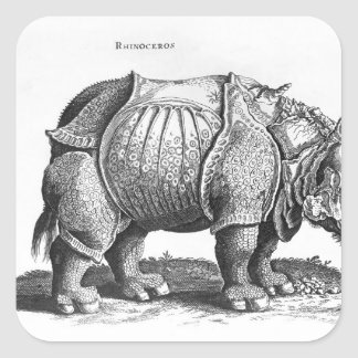 Rhinoceros, from 'Historia Animalium' Square Sticker