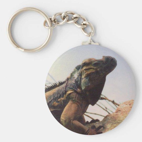 Rhinoceros Iguana Basic Round Button Key Ring