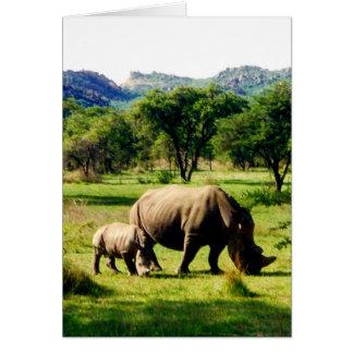 rhinos card