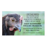 Rhode Island Red Hen Chicken Egg Farmer Pack Of Standard Business Cards