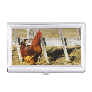 Rhode Island Red Rooster Business Card Holder