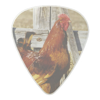 Rhode Island Red Rooster Acetal Guitar Pick