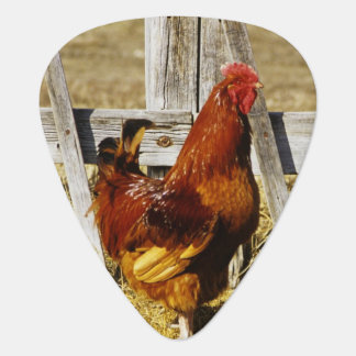 Rhode Island Red Rooster Plectrum