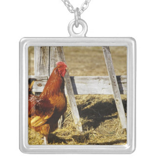 Rhode Island Red Rooster Silver Plated Necklace
