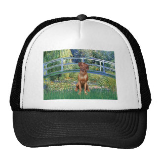 Rhodesian Ridgeback 1 - Bridge Hats