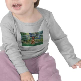 Rhodesian Ridgeback 1 - Bridge T-shirts