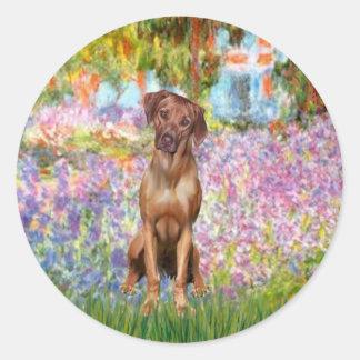 Rhodesian Ridgeback 1 - Garden Round Sticker