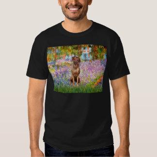 Rhodesian Ridgeback 1 - Garden T-shirts