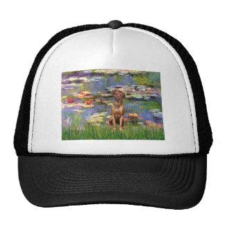 Rhodesian Ridgeback 1 - Lilies 2 Mesh Hat