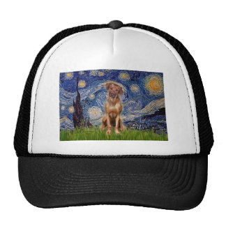 Rhodesian Ridgeback 1 - Starry Night Cap