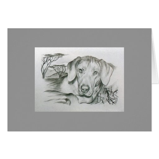 Rhodesian Ridgeback African Dog Card