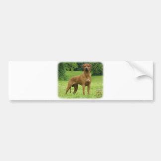 Rhodesian Ridgeback Car Bumper Sticker