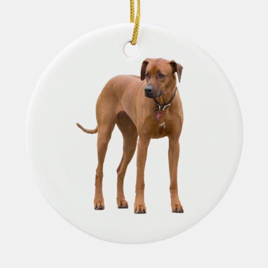 Rhodesian Ridgeback dog beautiful photo, gift Christmas Ornament
