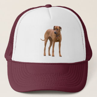 Rhodesian Ridgeback dog beautiful photo, gift Trucker Hat