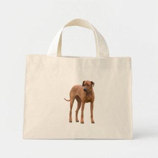 Rhodesian Ridgeback dog cute photo, gift Canvas Bag