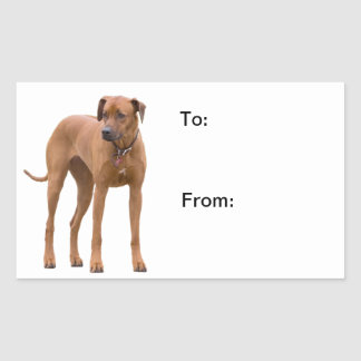 Rhodesian Ridgeback dog photo to, from stickers