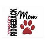 Rhodesian Ridgeback Mum 2