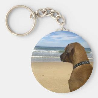 Rhodesian Ridgeback Products Basic Round Button Key Ring