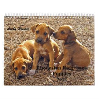 Rhodesian Ridgeback Puppies 2012 Wall Calendar