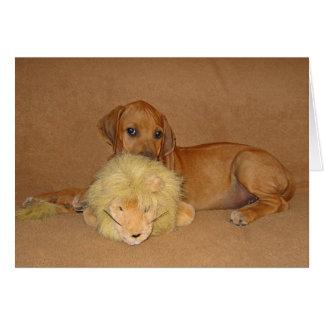 Rhodesian Ridgeback Puppy Card