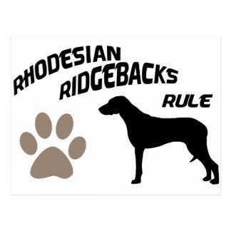 Rhodesian Ridgebacks Rule Postcard