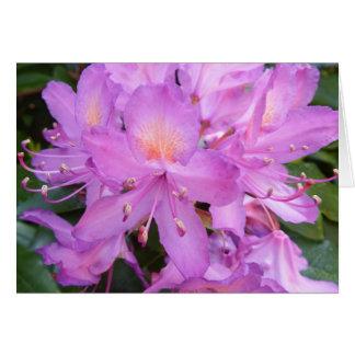 Rhododendron Flower Birthday Card