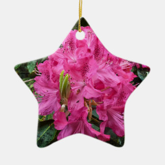 Rhododendron flower bloom with texture. christmas ornament
