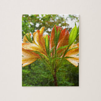 Rhododendron flower bloom with texture. jigsaw puzzle