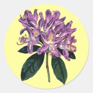 Rhododendron Ponticum Round Stickers