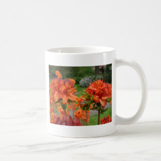 Rhododendrums 25 AZALEA FLOWERS Cards Gifts Mugs