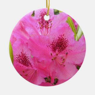 Rhody ~ ornament