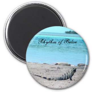 Rhythm of Belize Iguana by  the sea Magnet