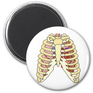 Rib Cage Lungs & Heart 6 Cm Round Magnet
