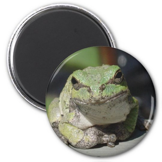 ribbit 6 cm round magnet