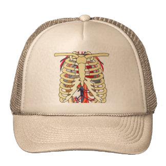 Ribs Veins Enlarged Heart Hats