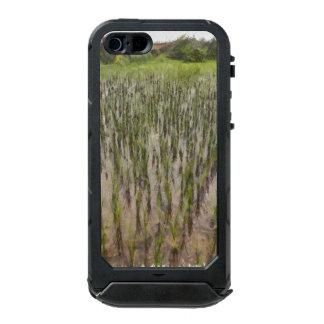 Rice fields and water incipio ATLAS ID™ iPhone 5 case